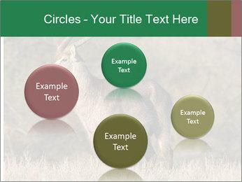 0000080254 PowerPoint Templates - Slide 77