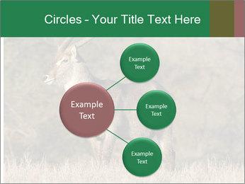 0000080254 PowerPoint Templates - Slide 79