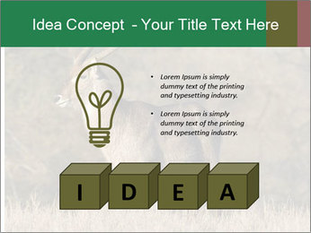 0000080254 PowerPoint Templates - Slide 80