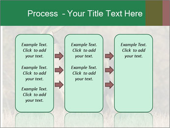0000080254 PowerPoint Templates - Slide 86