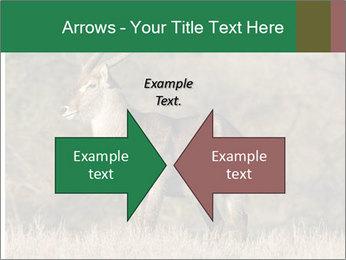 0000080254 PowerPoint Templates - Slide 90