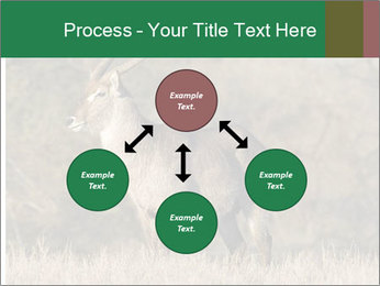 0000080254 PowerPoint Templates - Slide 91