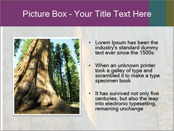 0000080259 PowerPoint Templates - Slide 13