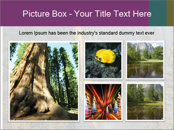 0000080259 PowerPoint Templates - Slide 19