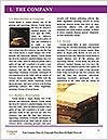 0000080260 Word Template - Page 3