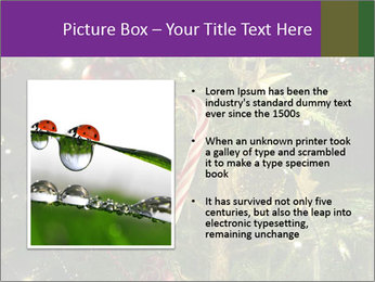 0000080267 PowerPoint Templates - Slide 13
