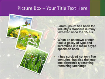 0000080267 PowerPoint Templates - Slide 17
