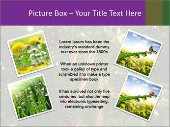 0000080267 PowerPoint Template - Slide 24