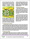 0000080267 Word Templates - Page 4