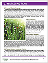0000080267 Word Templates - Page 8