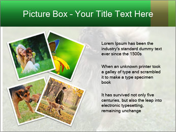 0000080270 PowerPoint Template - Slide 23