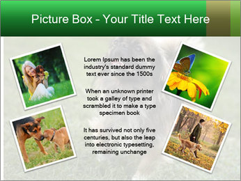 0000080270 PowerPoint Template - Slide 24