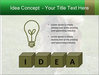 0000080270 PowerPoint Template - Slide 80