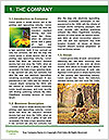 0000080270 Word Template - Page 3