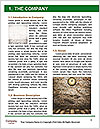 0000080271 Word Template - Page 3