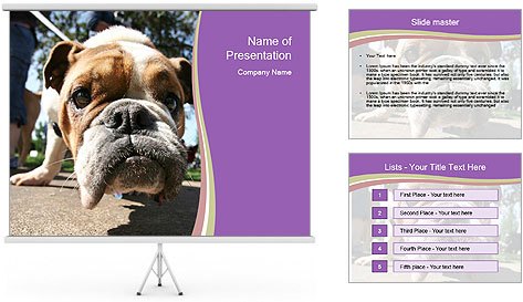 0000080272 PowerPoint Template