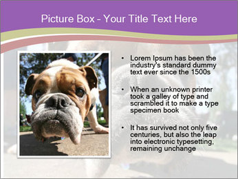 0000080272 PowerPoint Templates - Slide 13