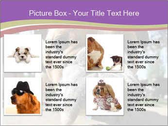 0000080272 PowerPoint Templates - Slide 14