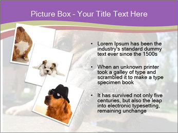 0000080272 PowerPoint Templates - Slide 17