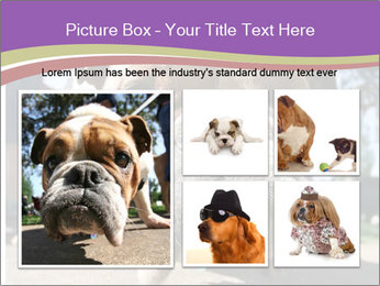 0000080272 PowerPoint Templates - Slide 19