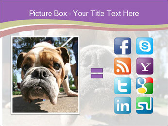 0000080272 PowerPoint Template - Slide 21
