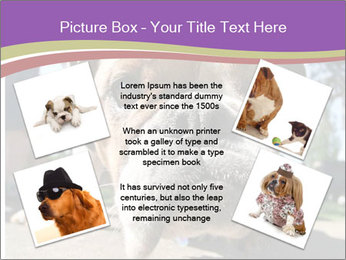 0000080272 PowerPoint Templates - Slide 24