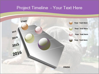 0000080272 PowerPoint Template - Slide 26