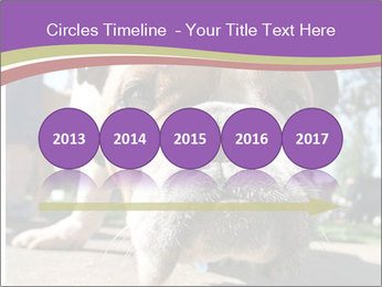 0000080272 PowerPoint Template - Slide 29