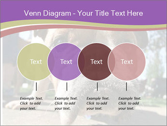 0000080272 PowerPoint Template - Slide 32