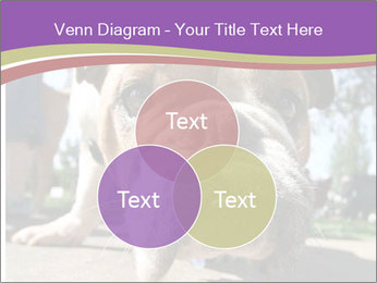 0000080272 PowerPoint Template - Slide 33