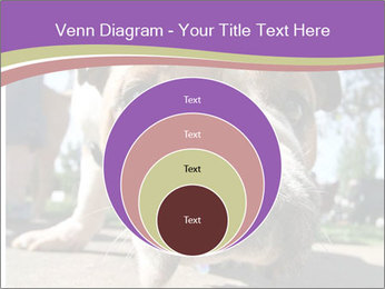 0000080272 PowerPoint Template - Slide 34