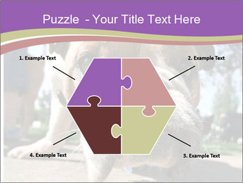 0000080272 PowerPoint Template - Slide 40