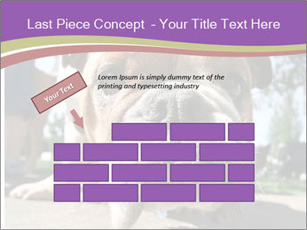 0000080272 PowerPoint Template - Slide 46