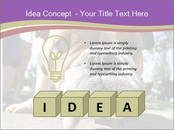 0000080272 PowerPoint Template - Slide 80