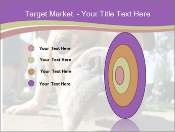 0000080272 PowerPoint Template - Slide 84
