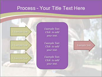 0000080272 PowerPoint Template - Slide 85