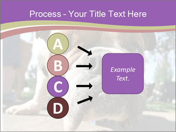 0000080272 PowerPoint Template - Slide 94