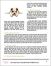 0000080272 Word Templates - Page 4