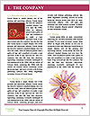 0000080281 Word Templates - Page 3