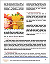 0000080282 Word Templates - Page 4