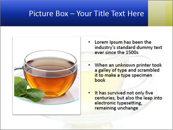 0000080284 PowerPoint Templates - Slide 13