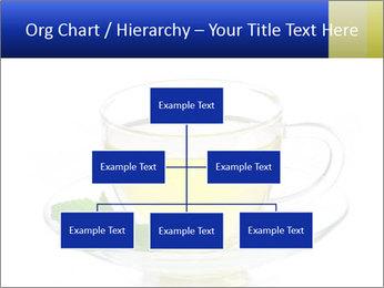 0000080284 PowerPoint Templates - Slide 66