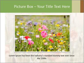 0000080295 PowerPoint Template - Slide 15