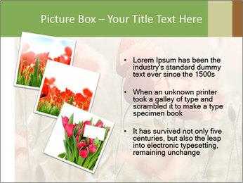 0000080295 PowerPoint Template - Slide 17