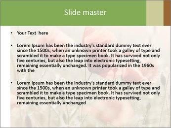 0000080295 PowerPoint Template - Slide 2