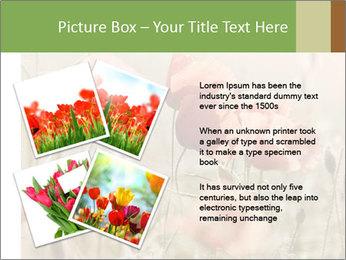 0000080295 PowerPoint Template - Slide 23