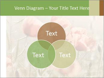 0000080295 PowerPoint Template - Slide 33
