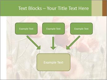 0000080295 PowerPoint Template - Slide 70
