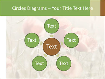 0000080295 PowerPoint Template - Slide 78