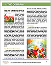 0000080295 Word Templates - Page 3